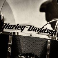 branding harley davidson